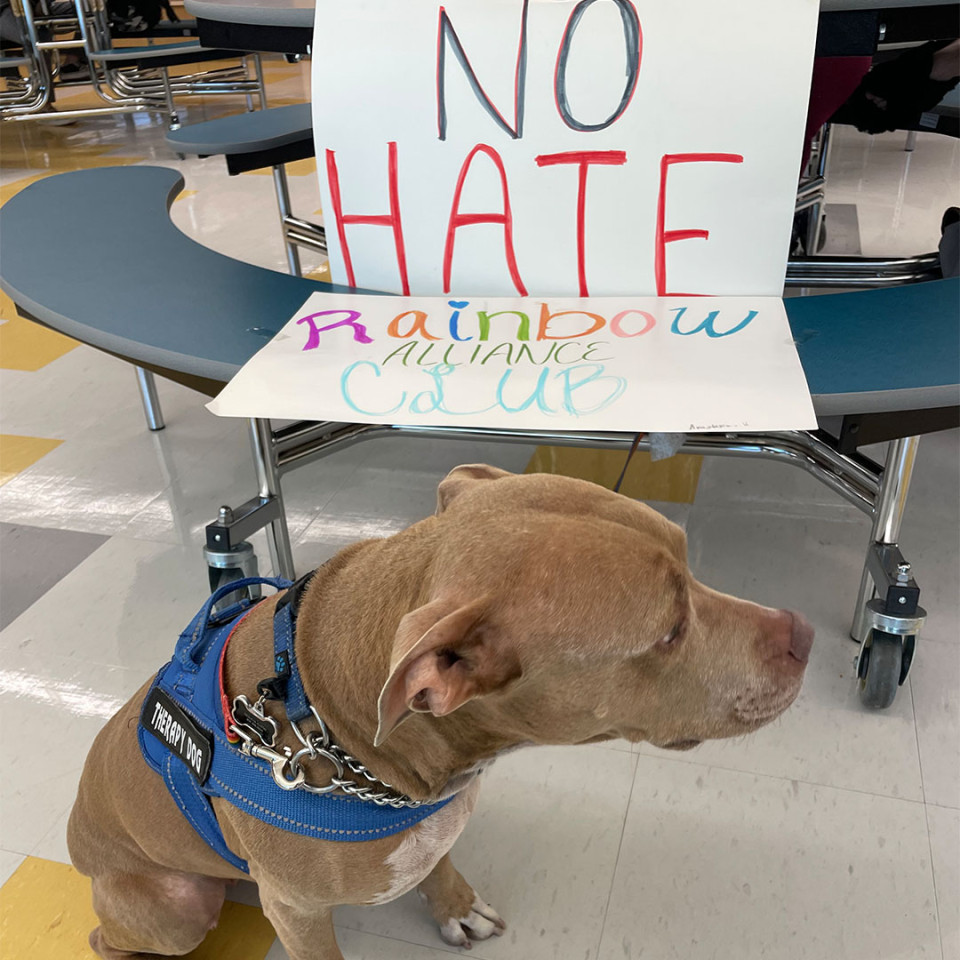 Hill Campus of Arts and Science therapy dog holding up a sign